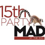 Party Mad logo