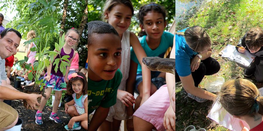 Education programs at the Zoo