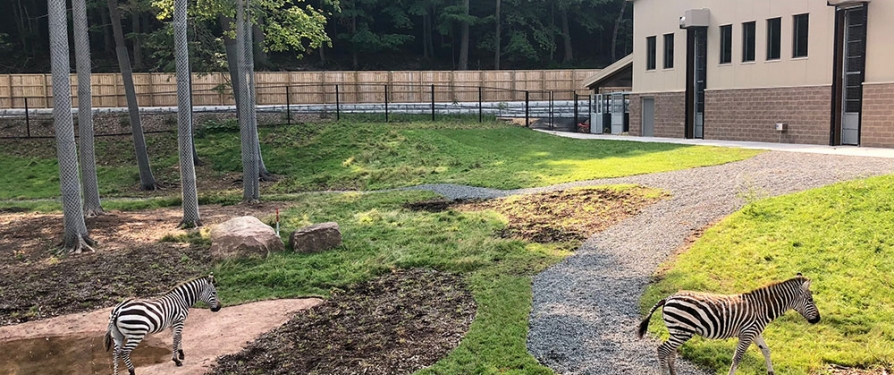 Animals of the Savanna Expansion to open September 13