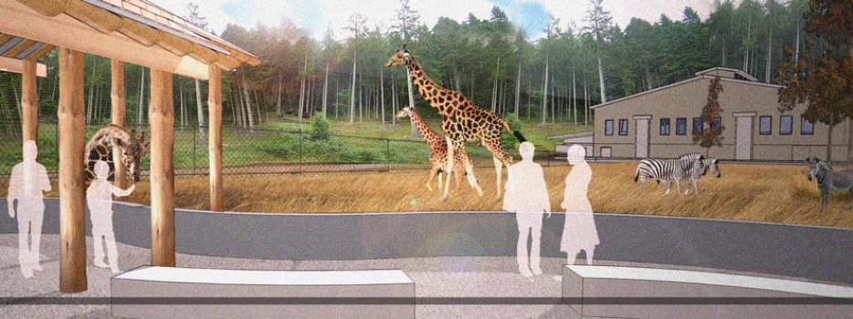 Seneca Park Zoo begins first phase of renovations